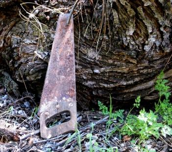 abandoned saw