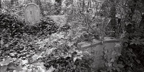 evergreen-cemetery-700